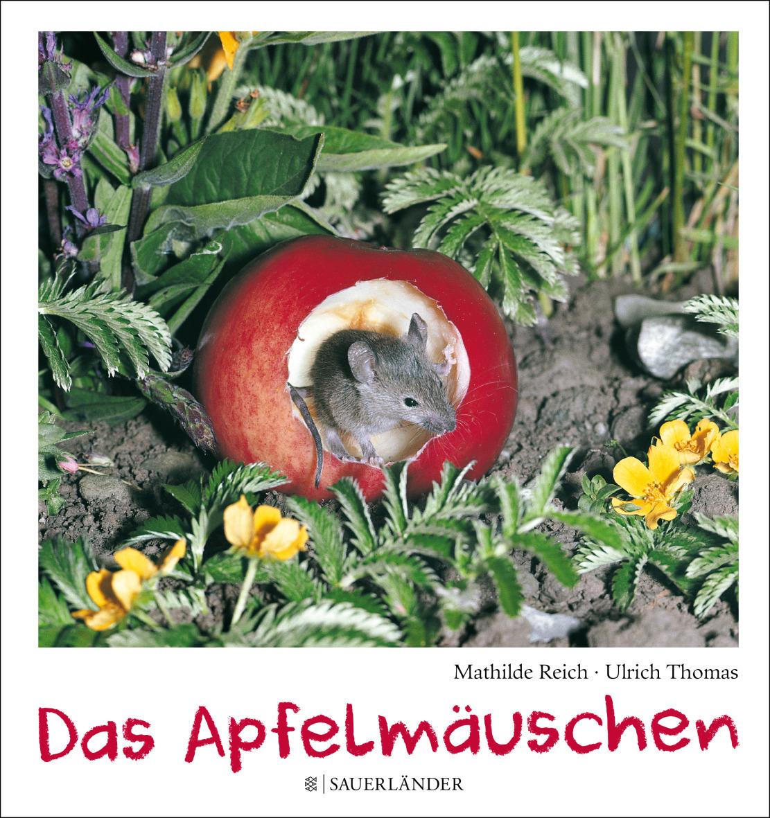 Unser Lieblingsbuch: Das Apfelmäuschen