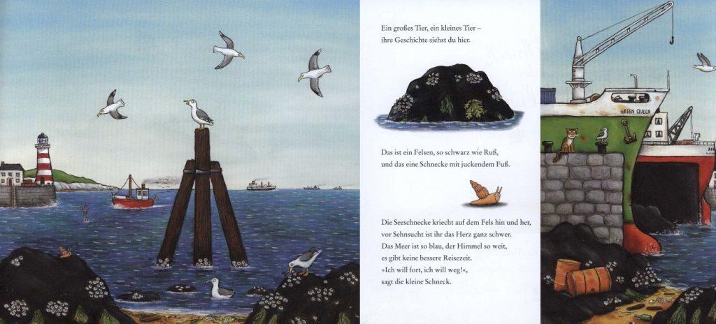 Die Schnecke und der Buckelwal Bild 1
